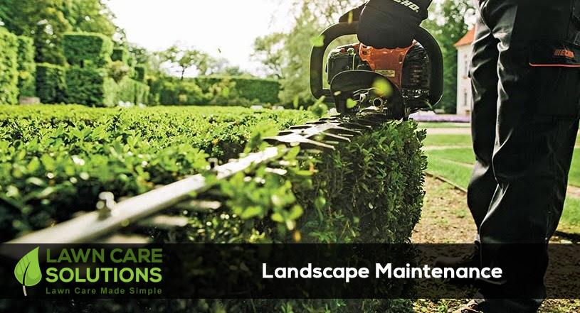 Flowerbed Maintenance - Landscape Maintenance Services - Lawn Care Solutions
